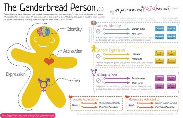 The Genderbread Person (versie 3.3)